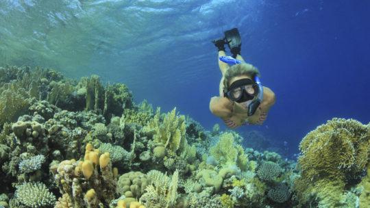 PADI Rescue Course in Hurghada