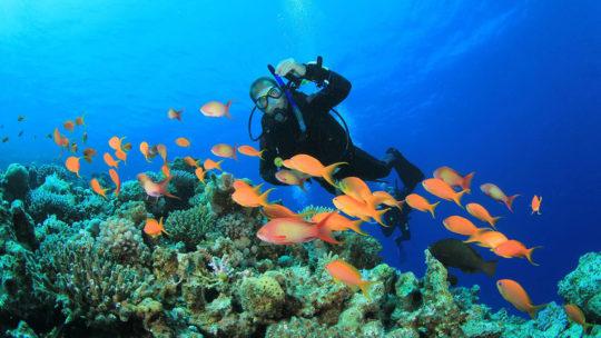PADI Discover Scuba Diving in Hurghada