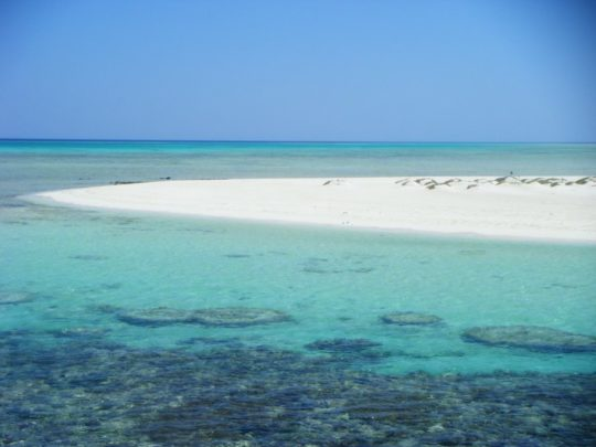 PADI Courses in Hurghada