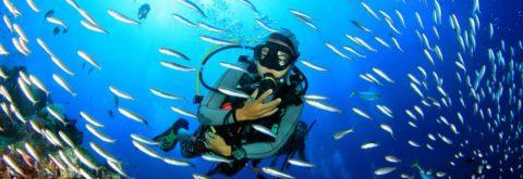 Scuba Diving Prices