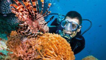 Scuba Diving Safety Advise
