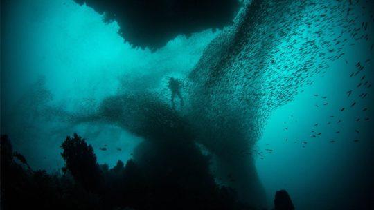 PADI Night Diver Diving Course in Hurghada