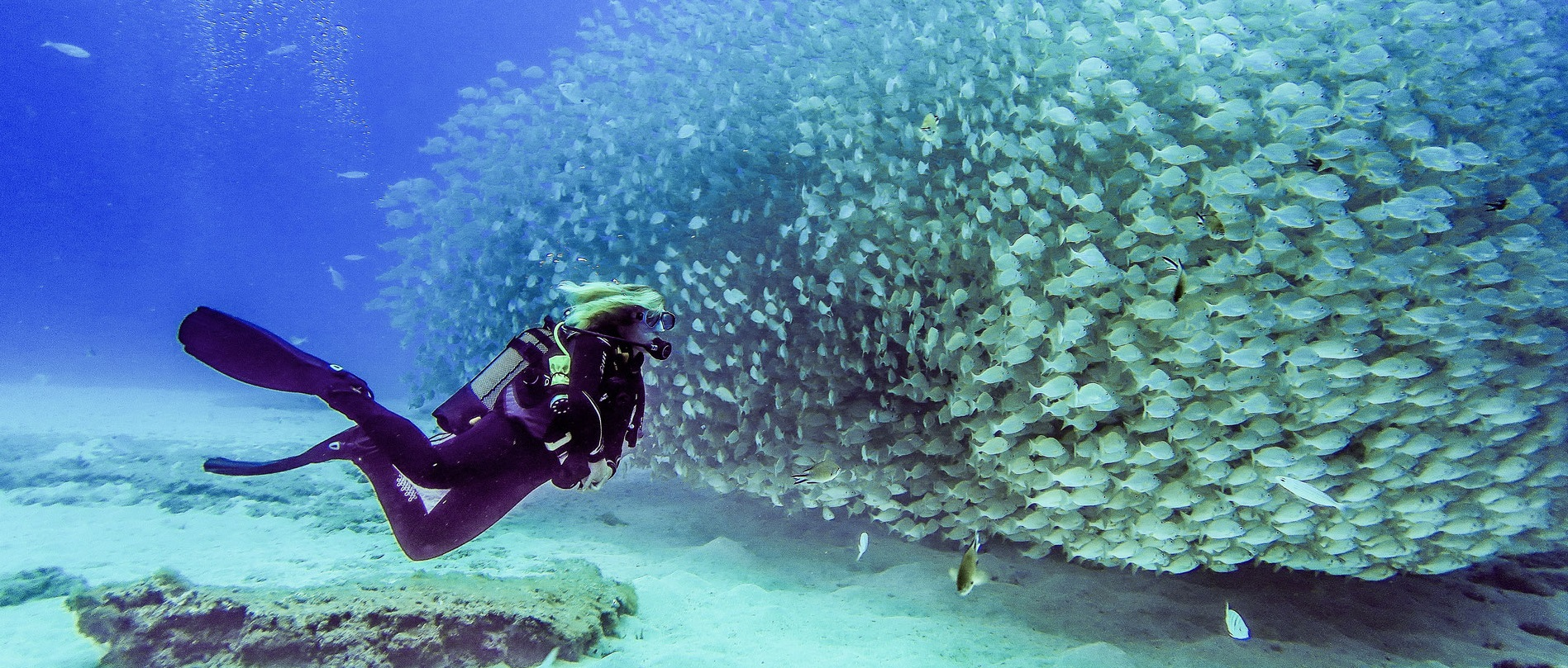 PADI Wreck Diving Course